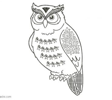 Owl embroidery design for embroidery